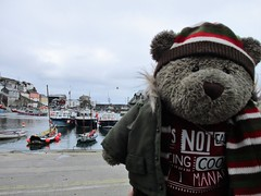 Mevagissey is nice (pefkosmad) Tags: tedricstudmuffin teddy ted bear cute cuddly animal toy stuffed soft plush fluffy holiday week holibob cottage cornwall bodmin cardinham westcountry westsidecottage daysout trips touring tourist tourism adventures