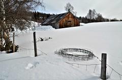 fence (KvikneFoto) Tags: snø snow vinter winter kulturlandskap fence gjerding norge hedmark kvikne tamron nikon