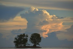 An Island with two Trees... (rosch2012) Tags: sunset evening island insel abend wolke cloud tree lonely lonesome einsam ruhig still quiet hut hütte ocean sea meer wasser water sky red rot daylight tageslicht