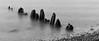 Zen (jkiter) Tags: deutschland ostsee meer gewässer pfahl sw langzeitbelichtung fehmarn natur landschaft balticsea germany landscape longexposure nature outdoor schwarzweis vogelfluglinie bw blackandwhite einfarbig monochrome sea waters