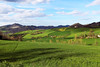 Countryside (raffaella.rinaldi) Tags: countryside mycountry home green spring landscape beautiful sunnyday hills peace shadows nature valmarecchia