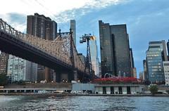 Roosevelt Island, 08.17.16 (gigi_nyc) Tags: rooseveltisland nyc newyorkcity queensborobridge bridge summer