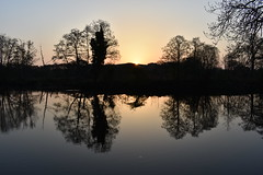 Serene sunrise (Phil Gayton) Tags: water tree sky landscape scenery silhouette serene sunrise river dart totnes devon uk