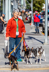 Debra Jane Seltzer with Griz, Grem, Dill and Nik, 2018 (Thomas Hawk) Tags: america california debrajaneseltzer neonspeaks neonspeaks2018 sanfrancisco tenderloin tenderloindistrict usa unitedstates unitedstatesofamerica dog dogs photographer us fav10 fav25 fav50