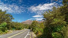Sur la route (jeanmarc.deconinck) Tags: new zealand aotearoa paysage landscape nature flore road