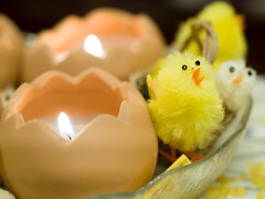 Spring chicks (James E. Petts) Tags: cake easter