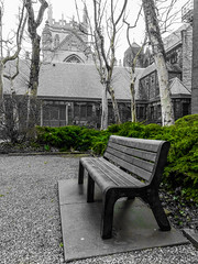 Bench of Tranquility (michaelwalker19) Tags: bench churches selectivecolor green cleveland downtowncleveland courtyard fog