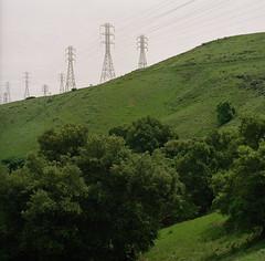 Bernal Ranch // Santa Teresa County Park (bior) Tags: hasselblad 500cm carl zeiss planar 80mm f28 kodak portra 160nc expired hasselblad500cm portra160nc kodakportra mediumformat 6x6cm 120 square santateresacountypark bernalranch grass hillside hiking expiredfilm landscape sanjose