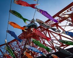 #119 Koi nobori and Tokyo Tower (tokyobogue) Tags: tokyo japan nikon nikond7100 d7100 tokyotower koinobori childrensday boysday sigma sigma1750mmexdcoshsm carp streamers 365project flickrfriday lowangle