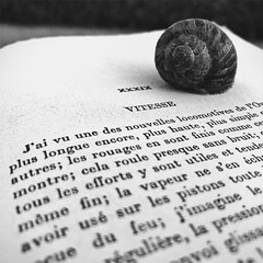 Il faut savoir se prêter au rêve... (NUMERIK33) Tags: rêve escargot joke vitesse livre book