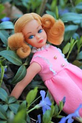 My favourite Living Skipper (tamsykens1) Tags: living skipper doll vintage barbie family