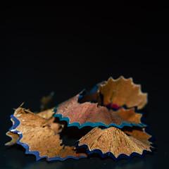 Nuance (Meculda) Tags: jagged macromondays nuance bleue blue macro macrophotography nikon