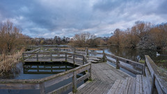 Figgate park pond & boardwalk (MilesGrayPhotography (AnimalsBeforeHumans)) Tags: 1635 fe1635mm sonyfe1635mmf4zaoss auldreekie a7ii fiffatepark boardwalk britain blending gloomy city arthursseat dusk edinburgh europe evening fe pond gardens iconic ilce7m2 jetty landscape lens landscapephotography outdoors oss photography photo panorama panoramic pano ptgui tranquil reflections river scotland sky scenic skyline sonya7ii scottish scottishlandscapephotography sony town trees uk unitedkingdom village waterscape wide water spring zeiss nature wildlife