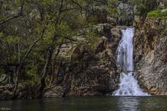 Waterfall El negrillo (Peideluo) Tags: spain nature waterfall water landscape tree agua río árbol cascada paisaje roca madera