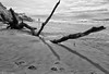 Playa (Nickotof) Tags: playa sea ocean ile island mer sable