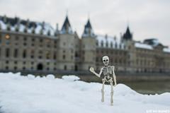 Paris under the snow (EatMyBones) Tags: figurine miniature paris poseskeleton rement skeleton snow toy toyphotography