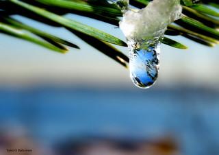 Frozen water drop!
