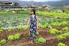 JJ in La Trinidad, Benguet, Philippines (joyful JOY) Tags: lettuce lettucefarm lettuces latrinidad benguet philippines baguio canon eos100d greens travel pinaytraveller globetrotter explorer wanderer lakwatsera asian woman pinay filipina jumpsuit lettucepicking