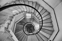 Spiral (jantoniojess) Tags: caracol escaleras escalones escaleradecaracol espiral spiral stairs museodeartesycostumbrespopularessevilla perspectiva perspective sevilla seville andalucía spain españa blancoynegro monocromático blackandwhite parquedemaríaluisa arquitectura geometría curvas