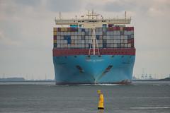 Maren Maersk_DVL2251 (larry_antwerp) Tags: zeeland maersk marenmaersk 9632129 container schip ship vessel 船 船舶 אונייה जलयान 선박 کشتی سفينة schelde 斯海尔德河 スヘルデ川 스헬더 강 رود شلده سخيلده walsoorden nederland netherlands