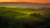 Podere Belvedere (Fernando Piçarra) Tags: sunset sunrise dawn dramatic sky sun dusk landscape moody fog twilight horizon over land tuscany toscana italy itália poggio podere belvedere poder belveder san quirico landescape field magic beauty misty mist val d´orcia crete senesi light