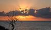 2017-09b-F9146 copia (Fotgrafo-robby25) Tags: alicante amanecer costablanca fujifilmxt2 marmediterráneo nubes rayosdesol