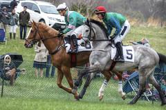 Horse Race (It's my whole damn raison d'etre) Tags: loudoun county oatlands horse race point 25th annual single frame hdr virginia va leesburg alex erkiletian nikon d810