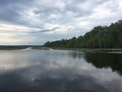 Lake Iamonia @ Bull Headley Landing Leon Co FL (2) (POsrUs) Tags: ©lancetaylor posrus florida leoncounty lakeiamonia bullheadleylanding