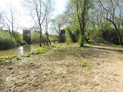 The old railway bridge, NER line to Driffield (petelovespurple) Tags: ryedale northyorkshire yorkshire malton
