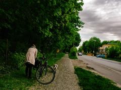 ...wenn Frauen Flieder klauen... (.Dirk) Tags: berlin olympusep5 mzuiko 122 street people prime m43 mft jette walkingthedog rosenthal