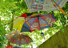 U is for Under the Umbrellas (BKHagar *Kim*) Tags: bkhagar umbrella umbrellas under challenge letter u outside yard backyard artproject umbrellaartinstallation julesphotochallengegroup fence trees leaves spring athens al