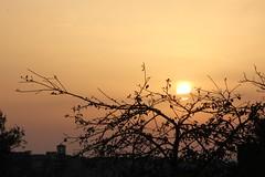 A braccia aperte! (Anfora di Cristallo) Tags: sera sole sun