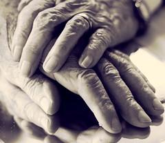 Lebenslänglich... 65 Jahre verheiratet (Antje_Neufing) Tags: hochzeitstag eisernehochzeit liebe 65 jahre lebenslang alt hände spiegelung verheiratet