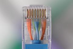Plug (Arkle1) Tags: macromondays plugsandjacks