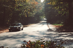 moving on (e_m_b_r_y) Tags: car driving drive forest woods trees road street nature outside october autumn fall sunny canon eos 600d grass shadow light fog mist