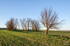 030_Moravian_Tuscany (Overtherainbow changes to KV Photography) Tags: katerinavodrazkova kvphotography landscape moravsketoskansko morava krajina moraviantuscany jiznimorava southmoravia moraviantoscana šardice