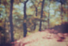 How does it feel (Jitka Ertelová) Tags: nature blurry blurryphoto wood forest trees spring may canon karlovyvary carlsbad czechrepublic