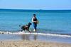 20180408 MARKGRAFENHEIDE (37).jpg (Marco Förster) Tags: dobermann hunde natur markgrafenheide ostsee strand frühling