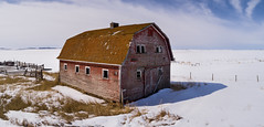 Old Prairie Barn (tlrichmnd) Tags: building house snow barn winter cottage sky hut landscape outdoors wood shack architecture outdoor noperson cold covered housing bungalow home countryside freezing skiing water nature hill ruralarea old rural brown made shelter shed top rustic roof red scenery travel abandoned wooden country field weather alberta standing notused