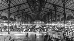 Gare du Nord - Paris (Guy Heaume) Tags: paris france gare station monochrome architecture halle train sncf ombre lumière nuance thalys 8mm uga wideangle europe