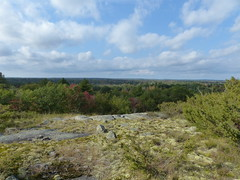 Expansive View 2 (geodeos) Tags: sheffieldconservationarea canadianshield granite rock stone forest tree grass lichen moss scenery landscape nature