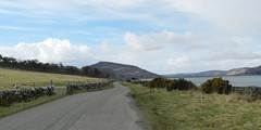 Leaving Skelbo, Sutherland, March 2018 (allanmaciver) Tags: loch fleet skelbo sutherland east coast single track road mound narrow cool hazy clouds sheep allanmaciver