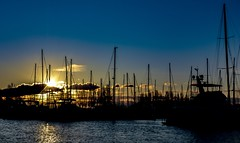 Night rays and gentle sways (Christie : Colour & Light Collection) Tags: harbour marina sunset silhouette boats sailboats evening outdoors reflections romance calm serenity tranquilty sailboat masts goldenhour sundown dusk twilight sky clouf