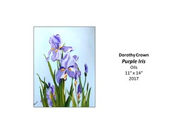 """Purple Iris • <a style=""""font-size:0.8em;"""" href=""""https://www.flickr.com/photos/124378531@N04/41697829482/"""" target=""""_blank"""">View on Flickr</a>"""