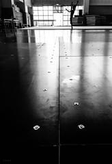 The strength put up by alignment. #alignment #centering #rhythmicgymnastics #floor #floorexercise #installing #settingup #assembly #springfloor #blackandwhite #b&w #taichung #taiwan (andidrew) Tags: iphotography iphone6s iphone bw alignment centering rhythmicgymnastics floor floorexercise installing settingup assembly springfloor blackandwhite b taichung taiwan 臺中 台中市 台灣 tw