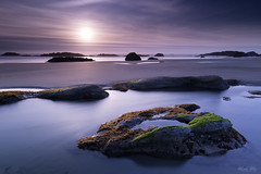 (Masako Metz) Tags: sunset beach ocean sea water sand rocks seaweed nature landscape seascape waterscape sky clouds tidepool oregon coast pacific northwest usa america outdoor coastline shore shoreline evening soft light longexposure