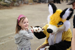 SAM_8641.jpg (Silverflame Pictures) Tags: 2018 vos hondachtigen furry cosplay april costumeplay fukumi canine fox furrie costume