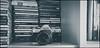 Canon AE-1 (G. Postlethwaite esq.) Tags: 50mmf18fd cdcollection canonae1 dof beyondbokeh bokeh bookshelf camera den depthoffield film mancave monochrome photoborder selectivefocus toned