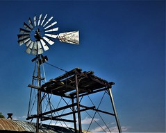 Wind (The VIKINGS are Coming!) Tags: farm ranch windmill mountains california sierras cattle cowboys