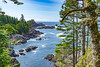On the Wild Pacific Trail (cdnfish) Tags: tofinobc ucluelet pacific pacificocean wildpacifictrail vancouverisland bc britishcolumbia canada sony sonya7m2 a7m2 landscape landscapephotography tree trees rocks rock ocean water island moss clouds cloud sky